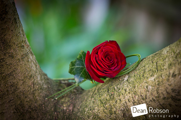 Gilwell-Park-Wedding-Photography-August-2015_08
